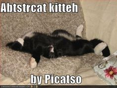 OMG!!!  My cat did this once and I had to go check on him.  I thought he was broken!