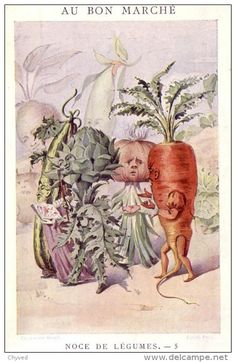Noces de Légumes. - 5