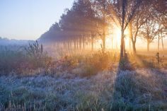Autunm cold sunrise by Eduard Panichev on 500px