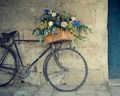 Vintage bicycle basket filled with flowers.