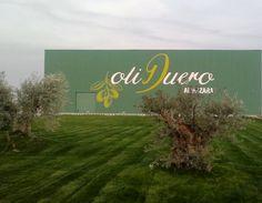 Almazara ecológica Oliduero en Valladolid donde se elabora el Aceite de Oliva Virgen Extra de Grupo Matarromera. Disponible en www.wanawine.com