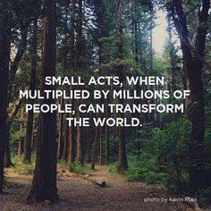 Small acts, when multiplied by millions of people, can transform the world (Howard Zinn)