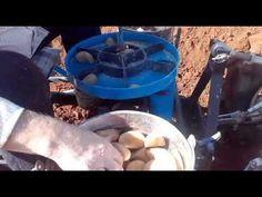Plantando patatas con Mini tractor 2018 Mini, Planting Potatoes