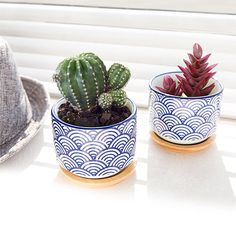 Blue Waves Succulent Pots, Succulent Planter, Ceramic Planter, Succulent Pot, Cactus Pot, Succulents,  Ceramic Pot, Mini Planter, Bonsai Pot