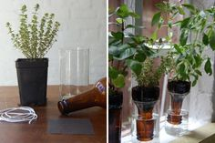 With the Superbowl two weeks behind, and St. Patty's Day right around the corner we thought you might need some DIY ideas for all of those beer bottles that are hogging space in your recycling bins. We've rounded up 18 different ways for you to put those bottles into good use.