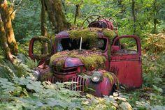 Camion de pompiers abandonné depuis 1940 ...