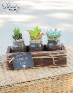 Plant succulents in mason jar and build a cute box for them...what a perfect display to help #BringInSpring !