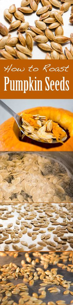 Don't throw away the pumpkin seeds from your pumpkin!  Roast them for a delicious healthy Halloween snack #paleo #vegan On SimplyRecipes.com