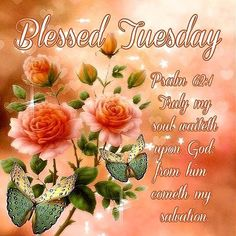 Blessed Tuesday~~J~ Psalm Monday Blessings, Morning Blessings, Morning Prayers, Tuesday Images, Tuesday Pictures, Good Morning God Quotes, Good Morning Picture, Happy Tuesday Quotes, Happy Quotes