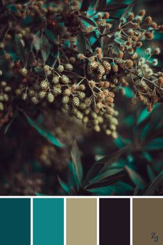 ZJ Colour Palette 162 #colourpalette #colourinspiration