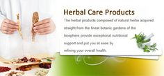 Herbal Care Products #world #news #health http://health.remmont.com/herbal-care-products-world-news-health/  Natural Herbal Care Products Herbal Care Products is a leading online Herbal Life store worldwide. We claim to be one of the best online herbal stores where you can have various facilities other than just buying the Natural Health Products. We are operating successfully for about 8 years since the birth of this company. Offering...