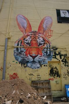 Is it a tiger? Is it a rabbit?..........there's no need to decide (hahaha).