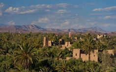 Looking across the Skoura Oasis with old kasbahs rising up above the date palms, as seen from the roof of the Dar Ahlam Hotel, near Skoura, Morocco. Picture: Ian Cumming/icimages.com