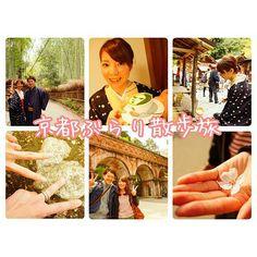【taba812】さんのInstagramをピンしています。 《『京都ぶらり散歩旅』  京都旅の写真まとめて📷✨ 左上:嵐山竹林 真ん中上:よーじやカフェ 右上:野宮神社 左下:南禅寺で見つけたハート石 真ん中下:水路閣 右下:散り落ちた桜の花びら  京都は子供から高齢者まで楽しめて、日本の風情を感じれる最強スポット✨  きっとこれからも何回も行くんだろうな🎶  #京都 #嵐山 #竹林 #よーじや #よーじやカフェ #野宮神社 #南禅寺 #ハート #石 #水路閣 #桜  #カフェ #着物 #参拝 #カップル #夫婦 #家族 #セルフタイマー #デート #新婚旅行 #ハネムーン #記念日 #japan #kyoto #kimono #date #honeymoon #travel #anniversary》