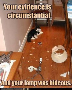 Your evidence is circumstantial. And your lamp was hideous.