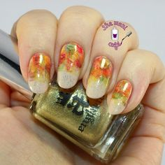 The Mani Café: Autumn Abstract