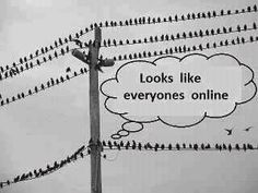 Looks like everyones online