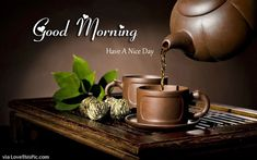 20 Cute Good Morning Quotes For Monday quotes monday good morning monday quotes good morning quotes happy monday monday quote happy monday quotes good morning monday