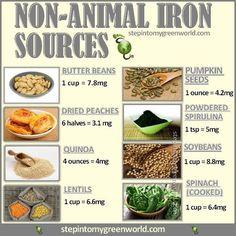 Non-Animal Iron Sources