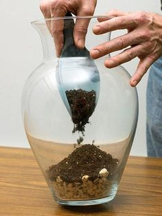 Step by step to creating a terrarium. http://www.midwestliving.com/garden/container/plant-beautiful-terrarium/?page=8,0#