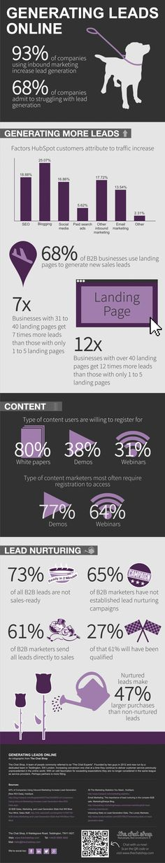 Generating Leads Online Infographic