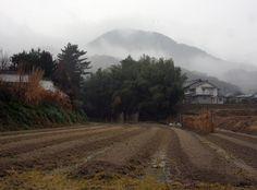 葛城市 石光寺 二上山 : 魅せられて大和路