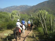 Evie and her friends go horseback riding in Mexico Horseback Riding, One And Only, Mexico, Mountains, Evie, Nature, Travel, Friends, Voyage