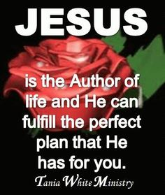 His Plan for my Life