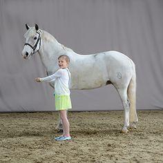 horse, paard, foto, photography, studio, paardensport,kids , ik en mijn paard, communiefoto's, pony
