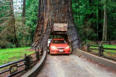 Pacific Coast Highway: Where to Stop on Your Road Trip   California Through My Lens