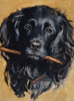 DOG ARTIST - Hazel Morgan. examine the highlights on the fur. color? could use this technique to paint a portrait of Shadow