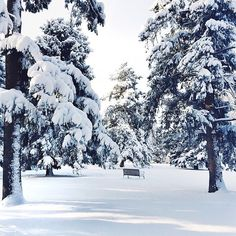 Colorado #momentswithsunday from @asaysoff