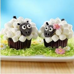 Cupcakes ~ #aawh #cutie #cup #cakes #sheep #love #this #cup #cakes #a #girl #and #a #boy #love #mmm #this #cupcakes #looks #delicious #deliiciousfood #cupcake #marsmallows #flower #jum #jummy