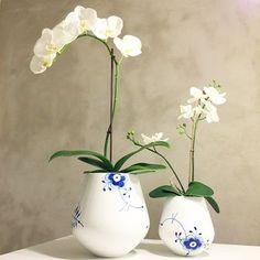 Kunne være en god ide til hylden med kopperne Royal Copenhagen, Biscuit, Danish Interior, Nordic Home, Blue Design, Danish Design, Orchids, Blue And White, Pottery