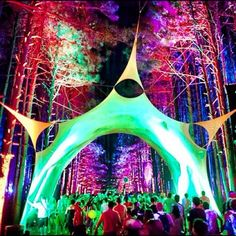 Rave for the mind blowing decorations   #electricforest #neon