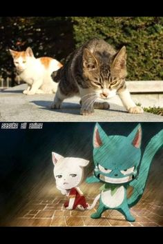 Funny anime memes fairy tail happy 67 ideas for 2019 Fairy Tail Happy, Fairy Tail Meme, Fairy Tail Nalu, Fairy Tail Ships, Otaku Anime, Got Anime, Anime Winter, Memes Pt, Funny Memes