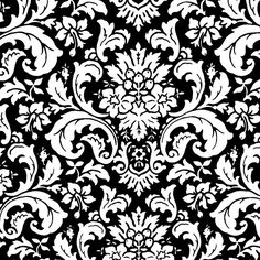 Black and White Vintage Paisley Pattern