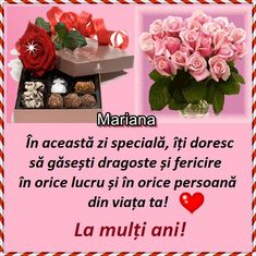 Happy Birthday Wishes Cake, Flower Arrangements, Animal, Mariana, Storage, Floral Arrangements, Animals, Animaux, Animales