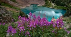 Your adventure begins at the Blue Lakes Trailhead, elevation 9400', in Uncompahgre National Forest.