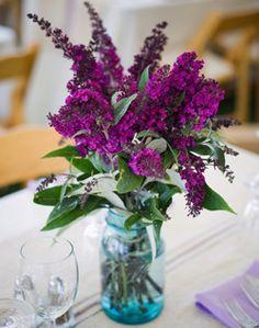 Love the bold purple color- ricki?