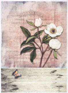 Ricepaper for Decoupage Decopatch Scrapbook Craft Sheet Vintage White Rose Card in Crafts, Multi-Purpose Craft Supplies, Crafting Paper   eBay!
