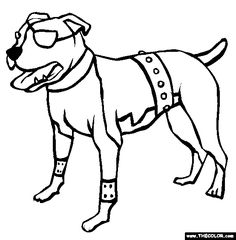 american pit bull terrier coloring page free american pit bull terrier online coloring
