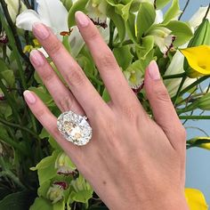 Idée et inspiration Bague Diamant : Image Description Pin for Later: This Engagement Ring Puts Kim Kardashian's Diamond to Shame We're Dreaming About This Oval-Cut Stunner Diamond Jewelry, Jewelry Rings, Jewelry Accessories, Fine Jewelry, Big Diamond Rings, Emerald Rings, Ruby Rings, Geek Jewelry, Jewelry