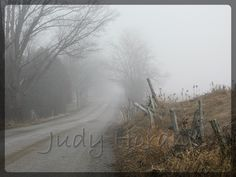 COUNTRY ROAD IN THE EARLY MORNING FOG - early fog rising off the road first thing in the morning (a glorious sight)