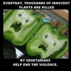 Please, End The Violence - Funny Memes