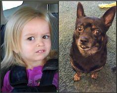 Parecidos razonables: Chloe y perrito. #humor #risa #graciosas #chistosas #divertidas