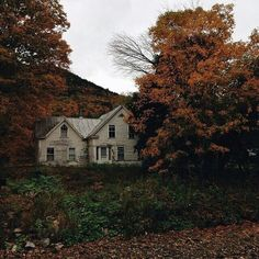 Autumn home exterior, yard Photo Trop Belle, Nature Landscape, Nature Nature, Autumn Cozy, Autumn Trees, Autumn Aesthetic, Slow Living, Abandoned Places, Abandoned Homes