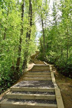 The 10 Best Hiking Trails Near Edmonton - Explore Magazine Hiking Places, Places To Travel, Places To See, Bike Trails, Hiking Trails, Alberta Travel, Canadian Travel, Bicycle Maintenance, Best Hikes