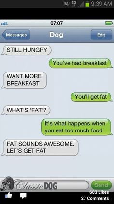 Text from dog texts, laugh, dogs, funni, fat, humor, funnnni