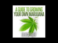 A Guide to Growing Your Own Marijuana Audiobook